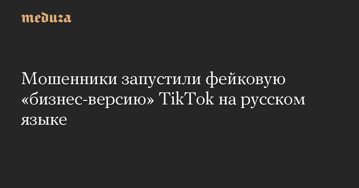 Мошенники запустили фейковую «бизнес-версию» TikTok на русском языке