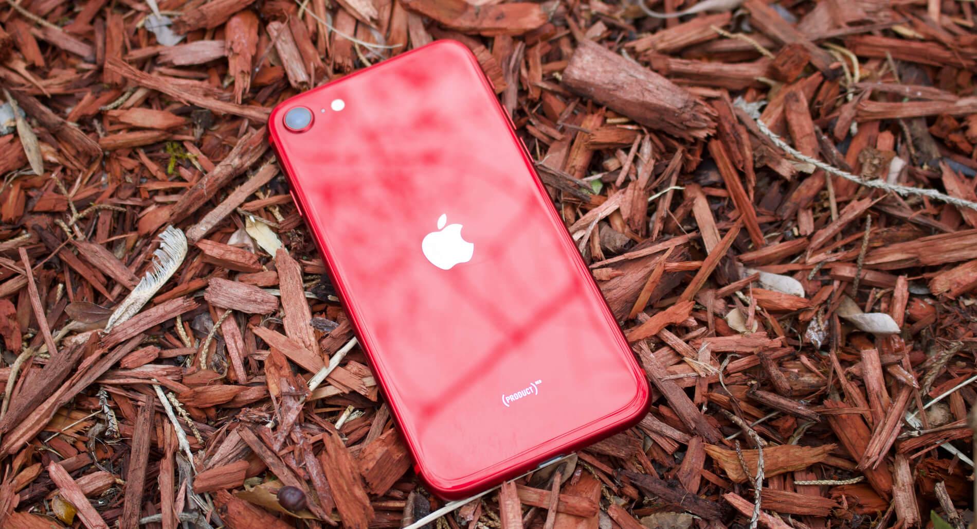 iPhone SE (2021) – особенности и цена