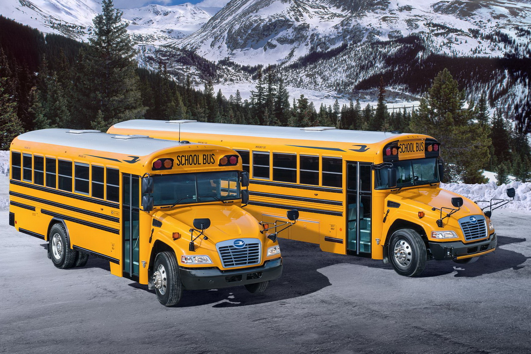 Ford нашел новое применение «атмосфернику» V8 объемом 7,3 литра