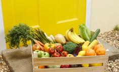 Диета Кима Протасова: здоровый способ похудеть