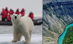 Роддом белых мишек и начало Тихого океана: топ-7 неочевидных мест России для путешествий