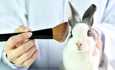 Теперь официально: Garnier признан брендом, не тестирующим косметику на животных