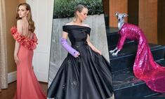 «Золотой глобус-2021»: Сара Полсон пришла в дизайнерском гипсе, а самая модная собака — в вечернем платье