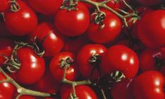 10 фактов о помидорах