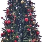 Украшения с пятигорской елки растащили хулиганы