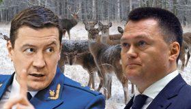 Опасная проверка: почему Забатурин не спешит выполнять поручение Краснова