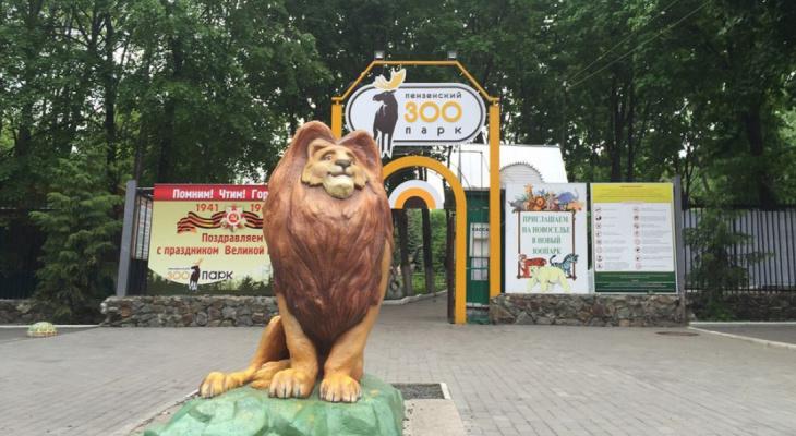 Гостям Пензенского зоопарка напомнили о бесплатной парковке неподалеку