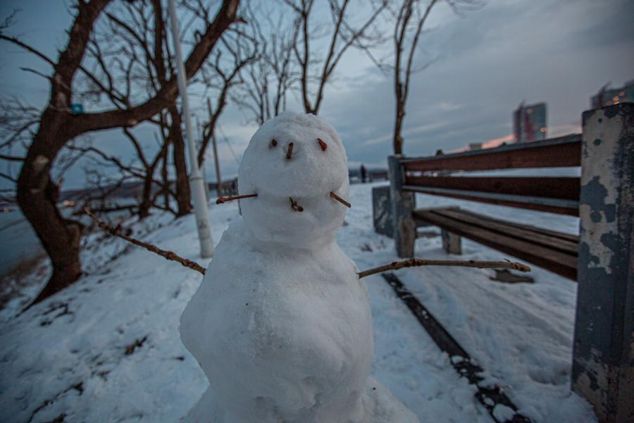 Владивосток приходит в себя после двухдневного снегопада