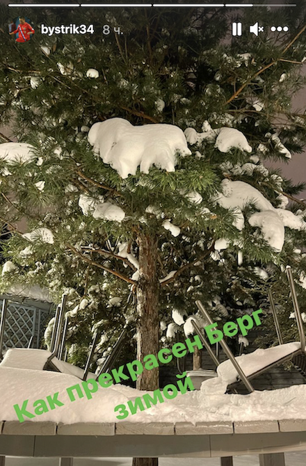 Быстров опубликовал фото дерева: «Как прекрасен Берг зимой»