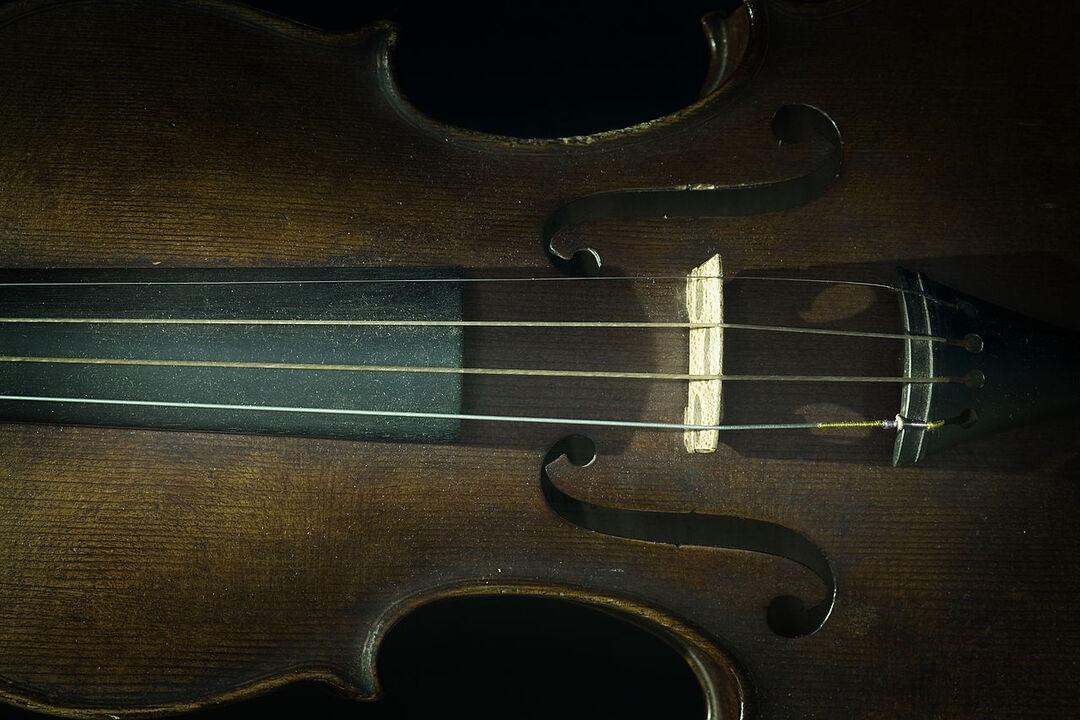 Фонд Ролдугина потратил $6,5 млн на скрипки итальянских мастеров