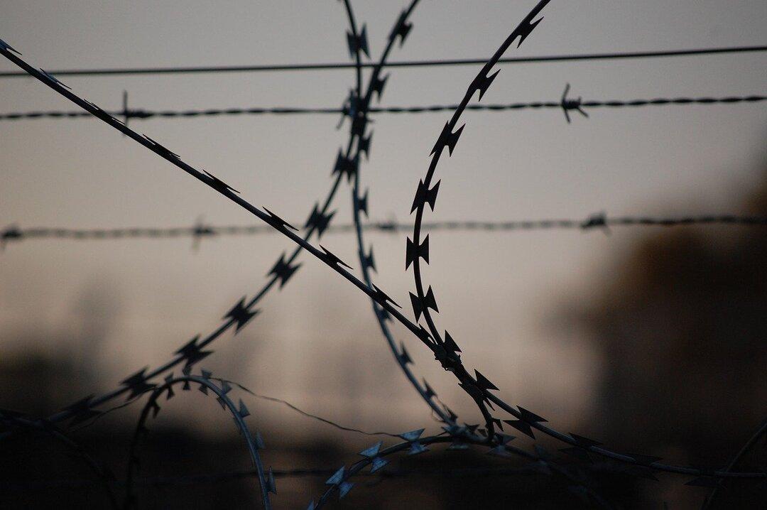 Российский заключенный «заработал» 30 млн рублей благодаря телефону