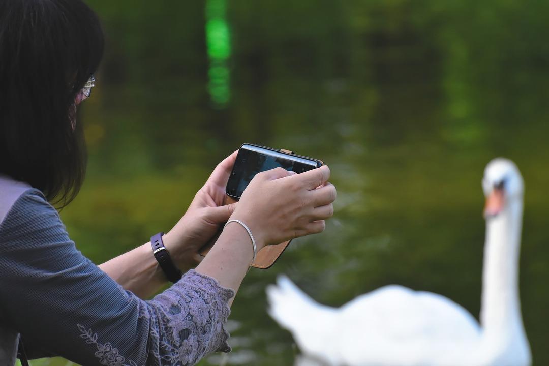 Samsung планирует выпустить смартфон с рекордной камерой