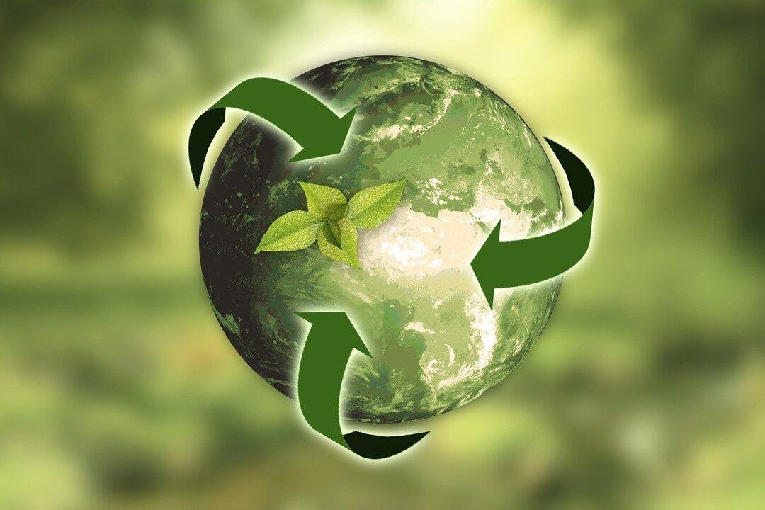 Более трети производителей в мире врут об экологичности своих товаров