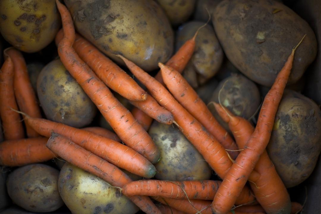 В России резко подорожали картофель и морковь