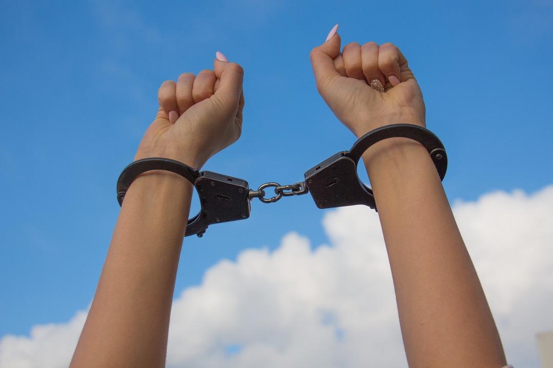 «Я вернулась». Притворявшуюся богатой дочь россиянина выпустили из тюрьмы в США