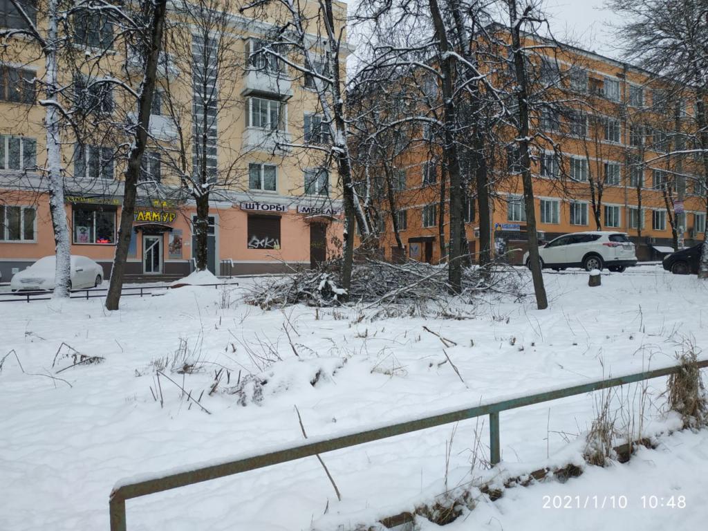 Одну из центральных улиц Смоленска «украсили» кучами веток