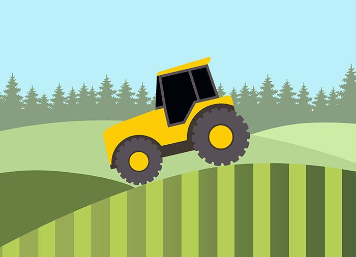 Обзор ВС: как получить землю в аренду, в собственность и без торгов