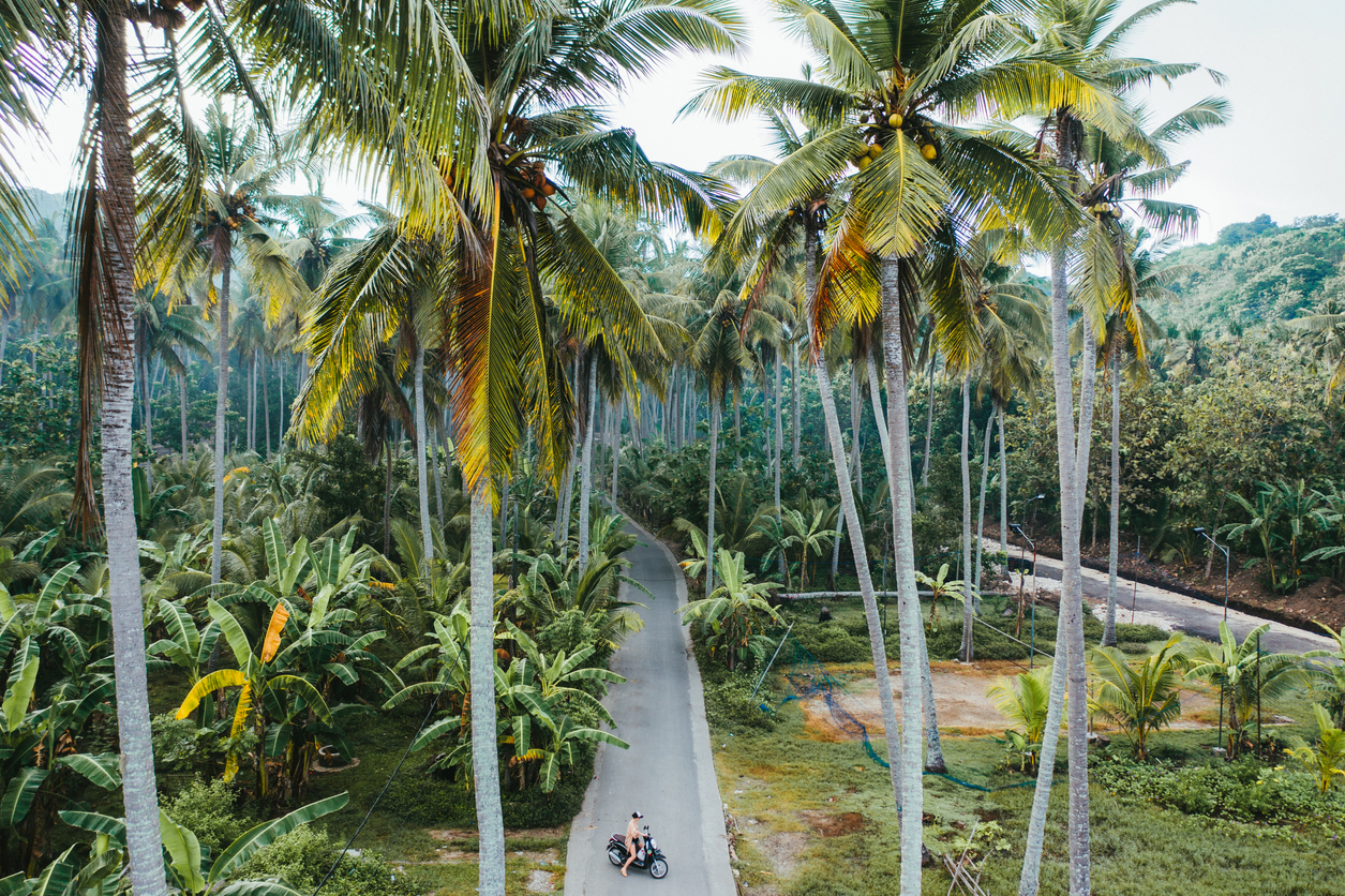 Бали может открыть границы для туристов ещё в 2020 году