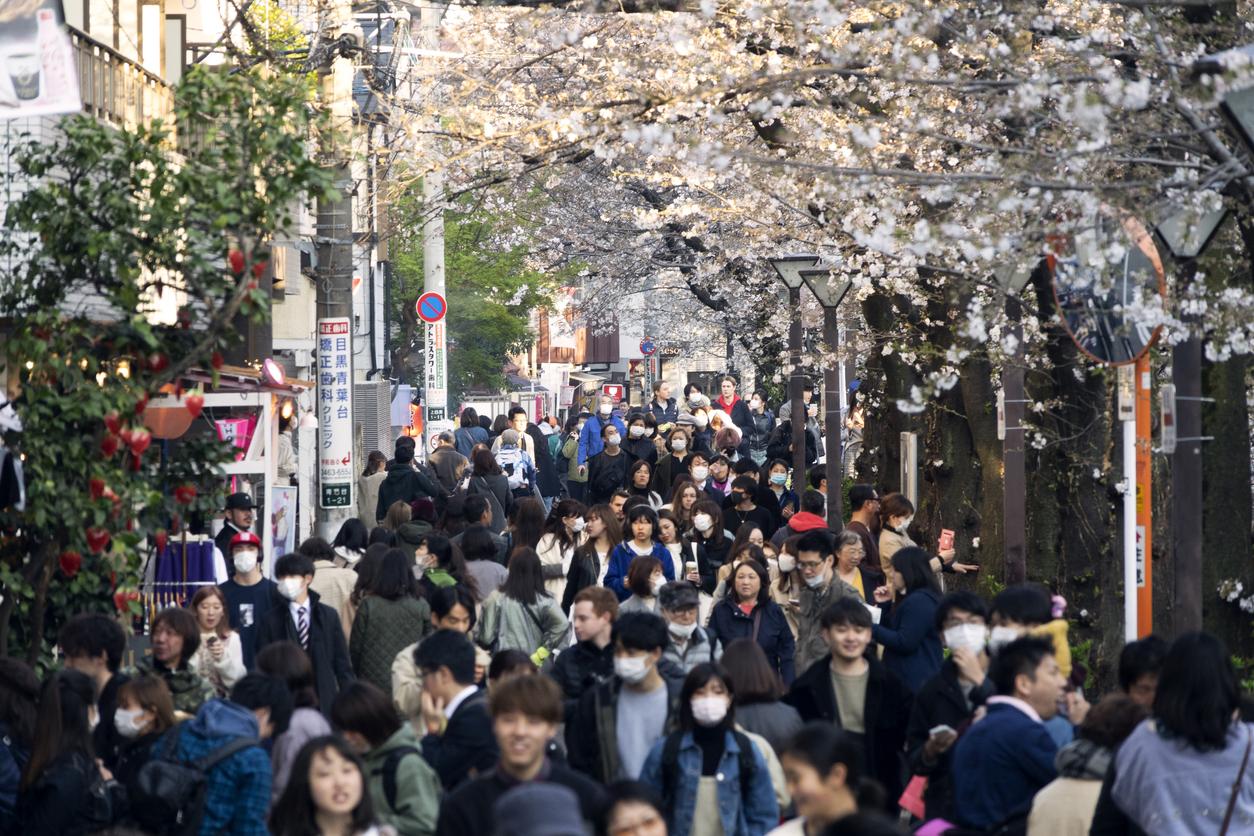 Япония профинансирует сервисы знакомств на основе ИИ, чтобы повысить рождаемость