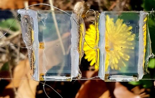 Корейские учёные создали «невидимые солнечные панели», которые можно интегрировать в смартфоны