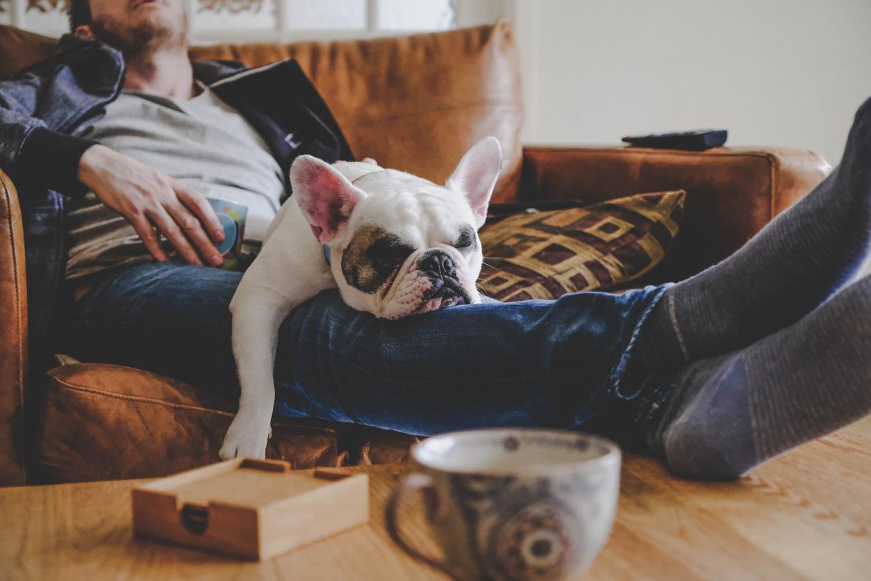 Исследование: послеобеденный сон улучшает работу мозга