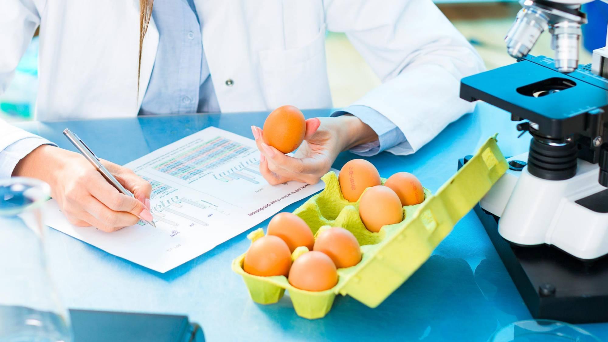 Натуральное — богатым, с ГМО — бедным. В России может появиться новая маркировка товаров для состоятельных людей