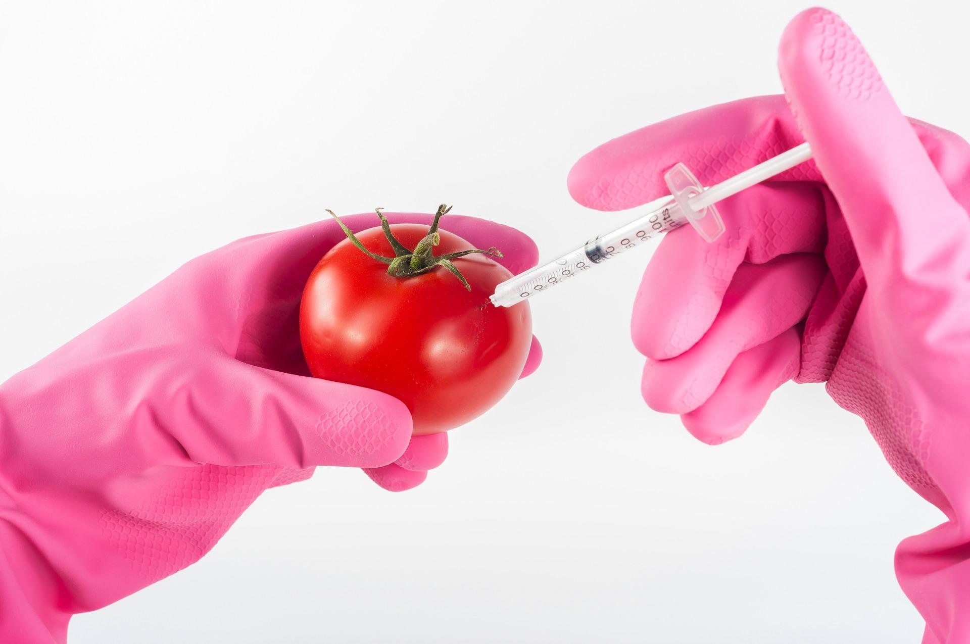 В России за год в восемь раз снизилось число продуктов с нарушением содержания ГМО