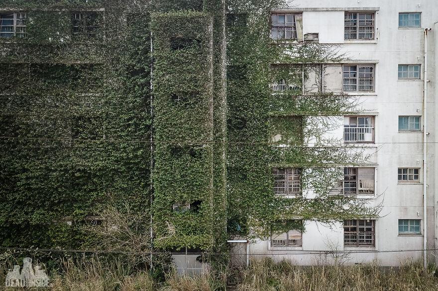 10 фото с заброшенного острова, где 130 человек живут среди развалин, от вида которых стынет кровь