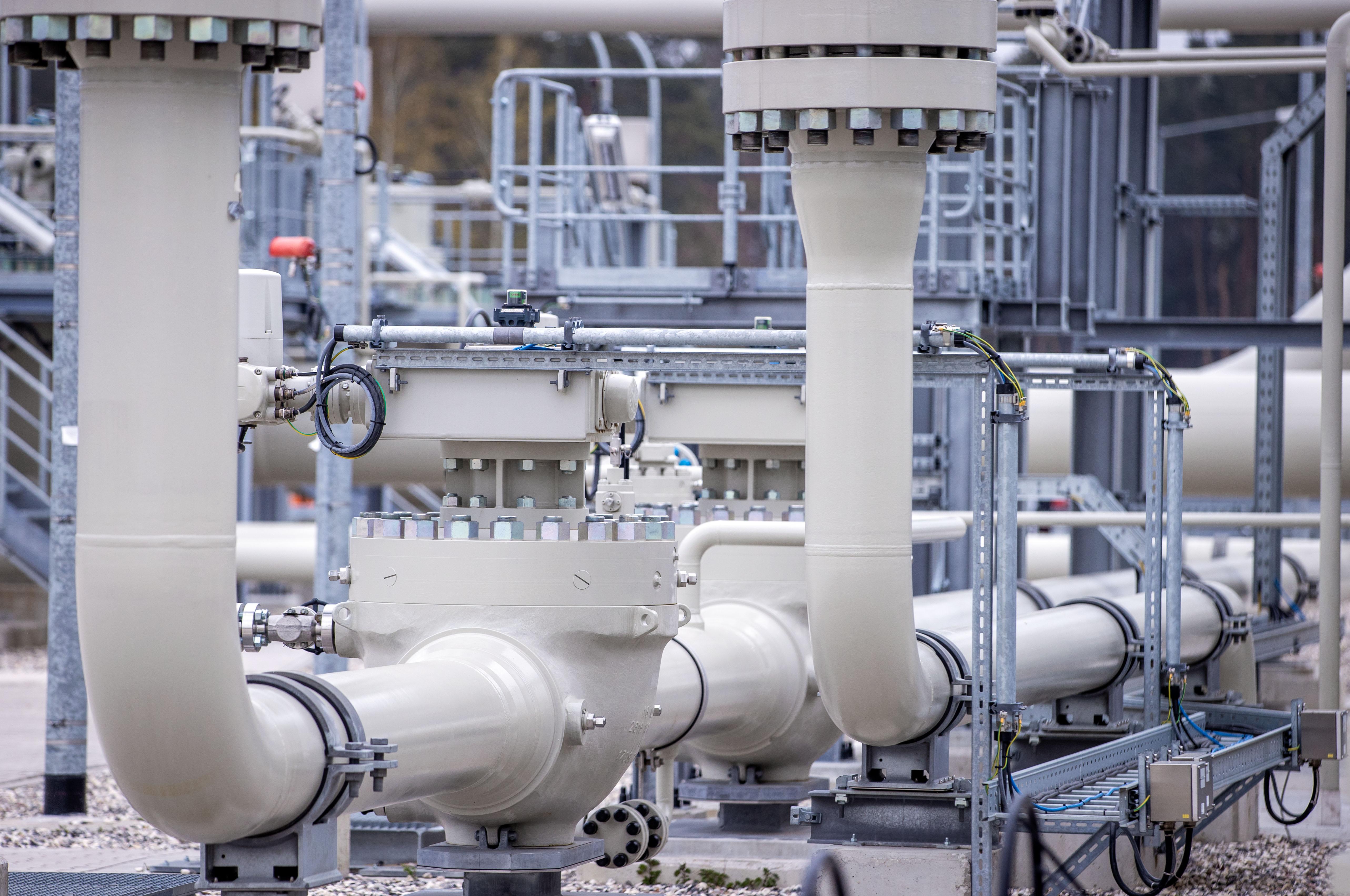 Король рынка: экономист исключил вероятность отказа Европы от российского газа