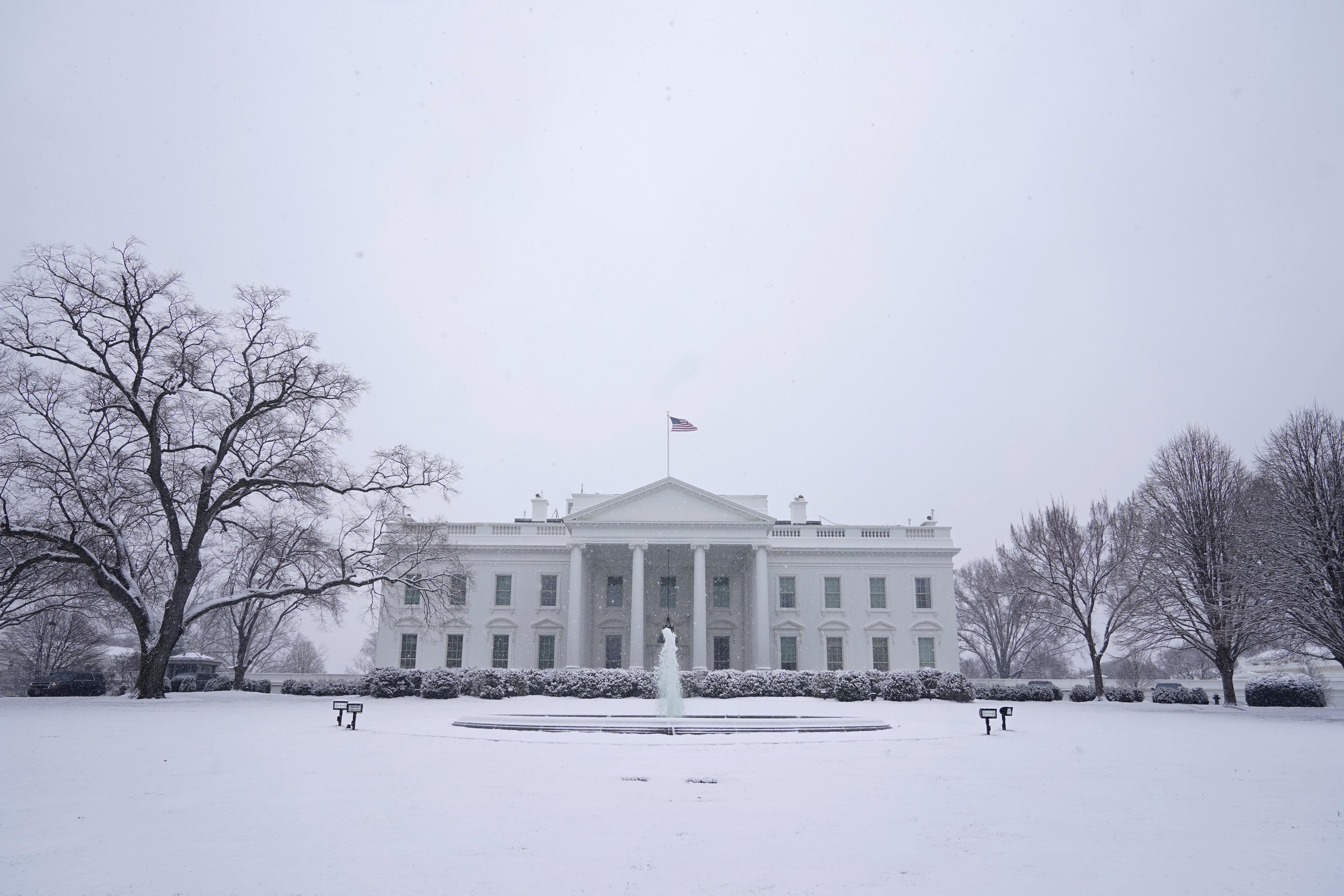 'Не успел Байден войти в Белый дом': Пушков рассказал, кто будет следующим президентом США