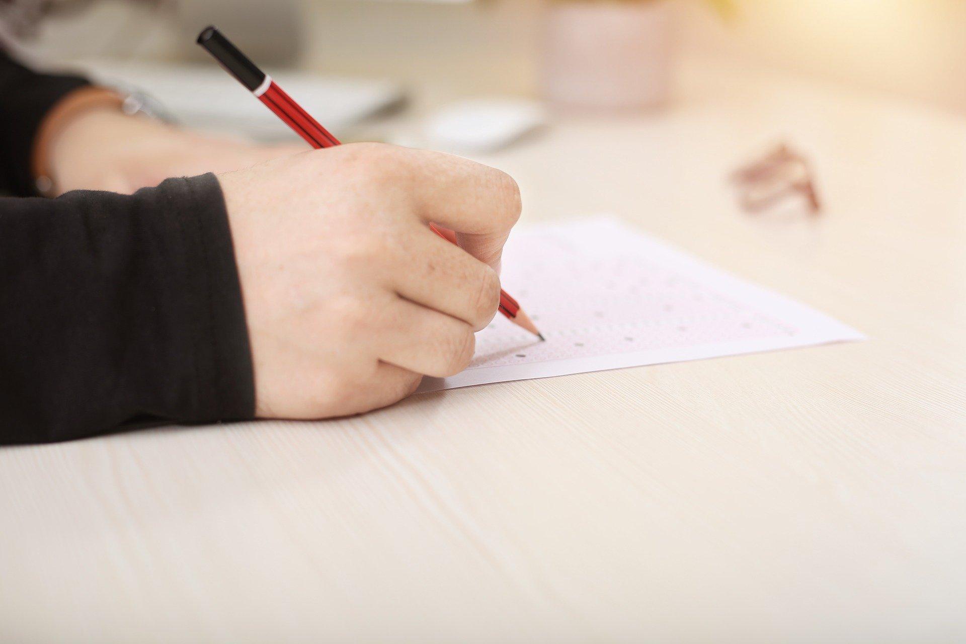 В России могут появиться бесплатные репетиторы для подготовки школьников к экзаменам