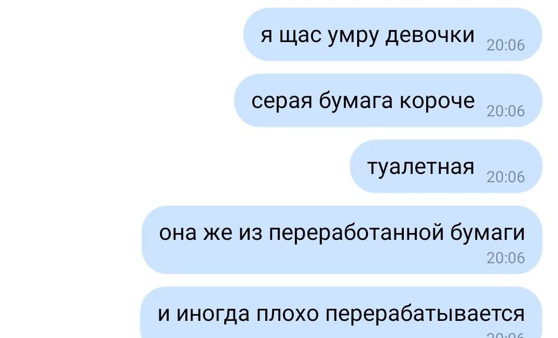 Девушка из Архангельска рассмешила весь Twitter, обнаружив, кто на неё смотрит с туалетной бумаги