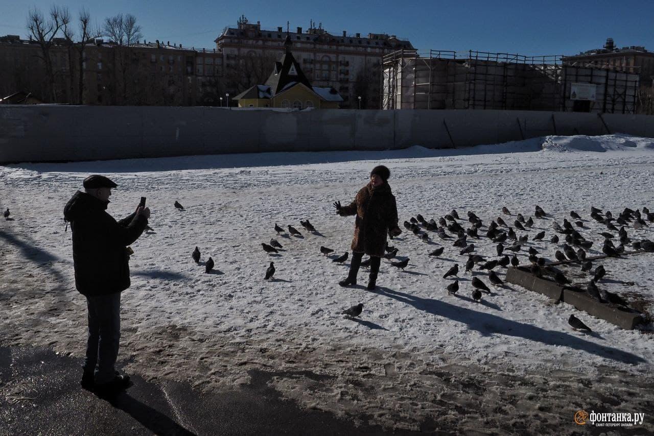 В Петербурге — последний мороз. Температура совершит скачок больше чем на 10 градусов
